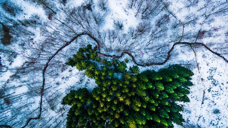 Mejores fotos 2016 - Dronestragram
