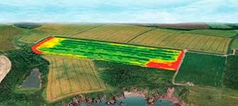 Agricultura de precisión y seguimiento y recuento de ganado