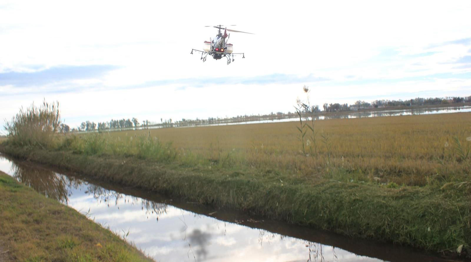 Proyecto-fumigación plaga mosca negra delta SITEP HAMELIN INTERREG FEDER